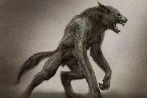http://www.animaldanger.com/images/werewolf.jpg